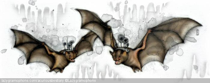 Cave Bats