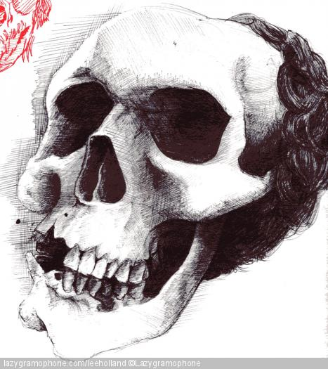scull observational